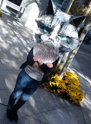 Ottawa woman creates giant grumpy cat costume out of found materials