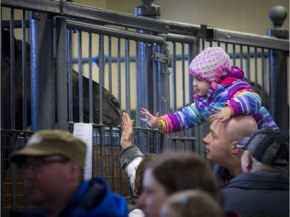 'Ottawa' Thousands Jam RCMP Facility to Check out Musical Ride Horses